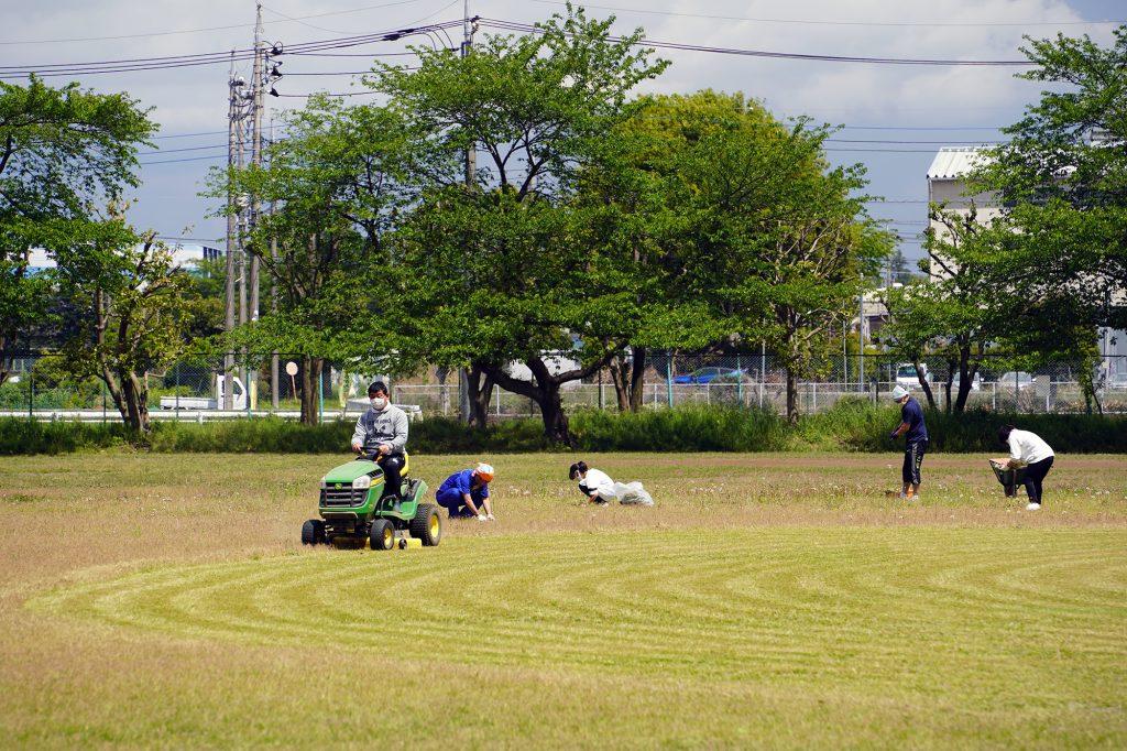 芝生メンテナンス